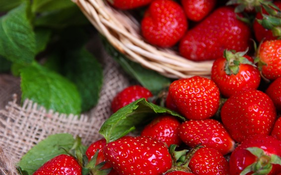 Papéis de Parede Bagas frescas, morangos vermelhos, fruta deliciosa