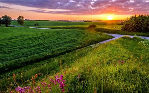 Wallpaper Green fields, sun rays, trees, grass, clouds, sunset