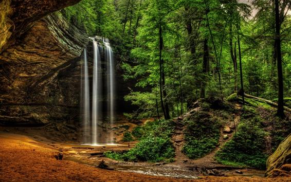Обои Государственный парк Hocking Hills, лес, деревья, водопад