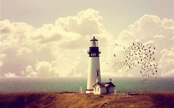 Wallpaper Lighthouse, house, sea, coast, birds