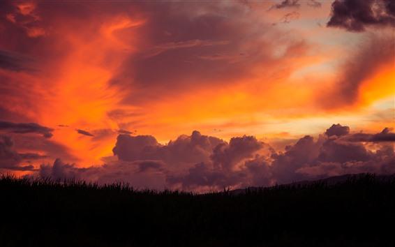 Fondos de pantalla Maui, hierba, cielo rojo, nubes, puesta de sol