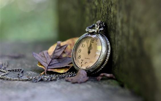 Wallpaper Pocket watch, leaves, corner