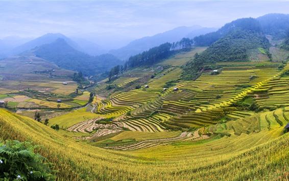 Papéis de Parede Terraço de arroz, campos, montanhas, zona rural, bela paisagem