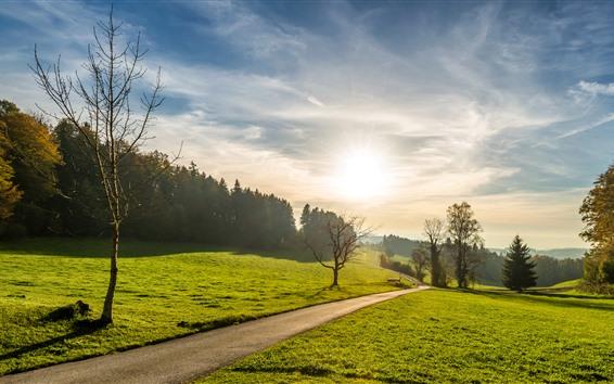 Обои Лето, дорога, трава, деревья, облака, небо, солнечные лучи