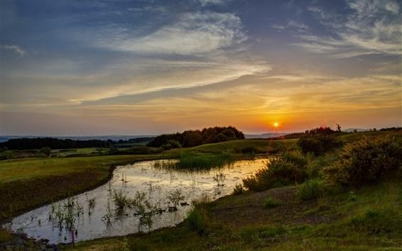 Wallpaper Sunset, grass, trees, sun rays, nature scenery