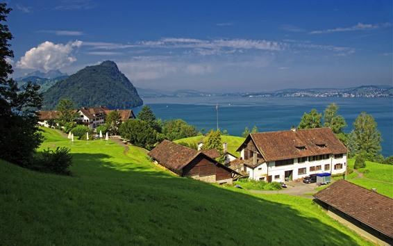 Papéis de Parede Suíça, Gersau, Lago Lucerna, Inclinação, Casas, Verde