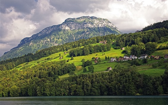 Papéis de Parede Suíça, Lago Lucerne, Montanhas, Árvores, Casas, Bela paisagem