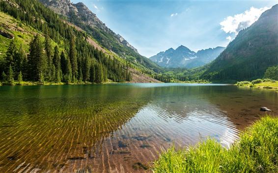 Wallpaper Trees, lake, clear water, mountains, Colorado, USA