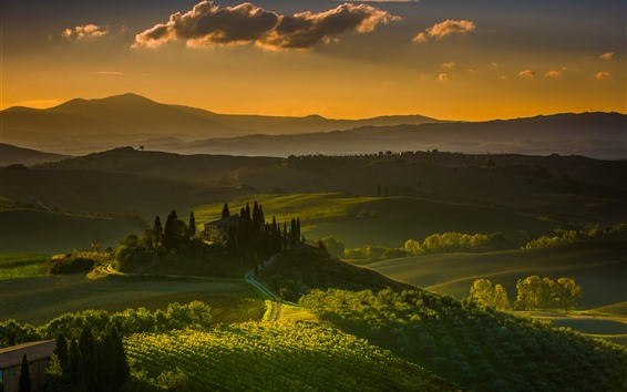 Wallpaper Tuscany, Italy, village, countryside, fields, trees, green