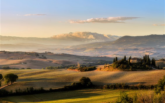 Wallpaper Tuscany, meadows, field, sunset, Italy