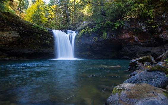 Papéis de Parede Cachoeira, Oregon, árvores, pedras, outono, EUA
