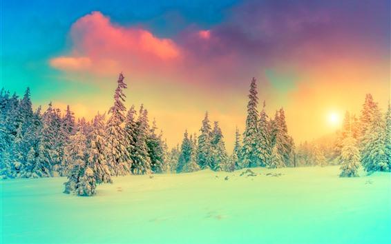 Fond d'écran Hiver, arbres, neige, coucher de soleil, nuages, brouillard