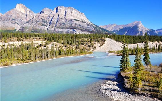 Обои Национальный парк Банф, река лук, горы, деревья, Канада