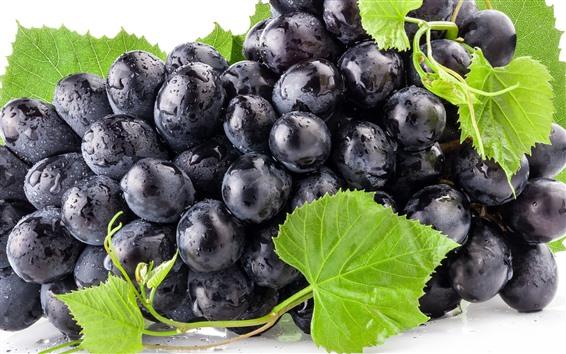 Обои Фрукты, черный виноград, зеленые листья