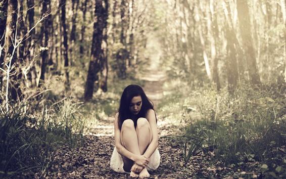 Обои Одинокая девушка, сидеть на землю, деревья, трава, солнечные лучи