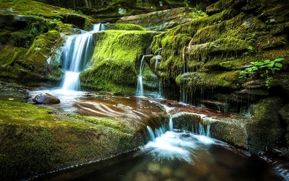 Обои Tompkins Falls, водопад, зеленый мох, скалы, Нью-Йорк