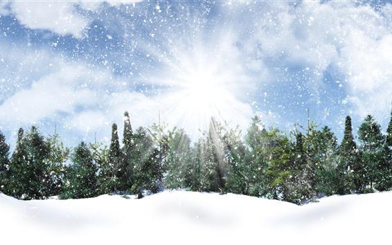 Обои Деревья, снег, солнечные лучи, снежинки, зима