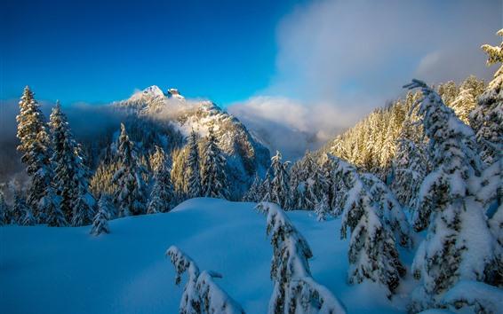 배경 화면 밴쿠버, 눈, 산, 구름, 겨울, 캐나다