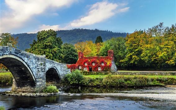 Fondos de pantalla Gales, LlanRwst, Puente, Casa, Árboles, Río, Inglaterra