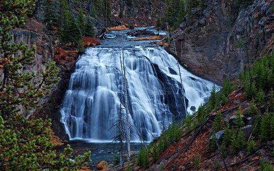 Обои Йеллоустонский национальный парк, США, водопад