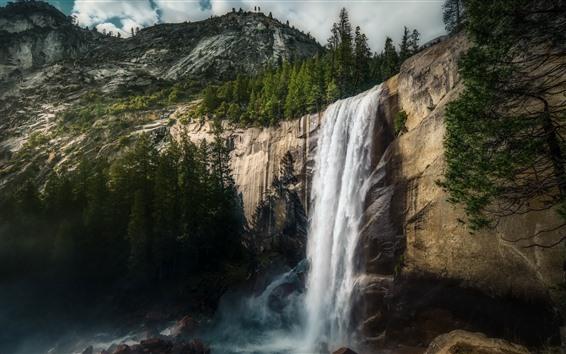 Обои Yosemite Национальный парк, Фернал Фолс, водопад, Деревья