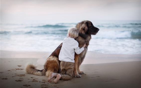 Обои Ребенок мальчик, собака, пляж, море