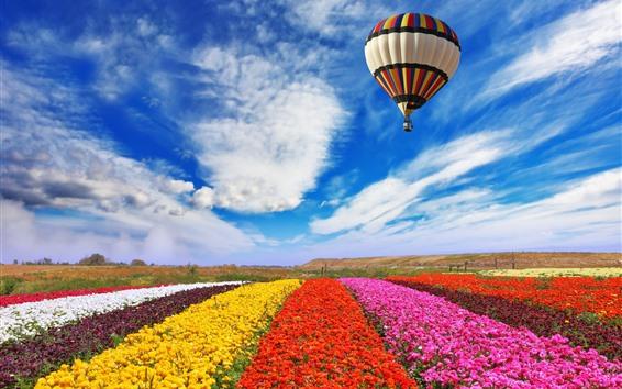 Обои Красочные цветы поле, воздушный воздушный шар полет в небе, облака