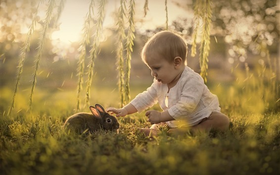 Wallpaper Cute child and rabbit, baby, willow, grass
