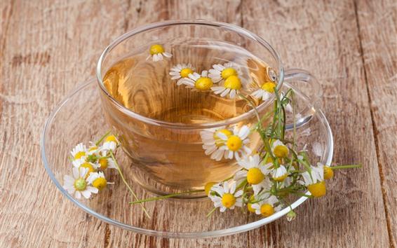 Hintergrundbilder Daisy-Tee, Glasschale, Getränke