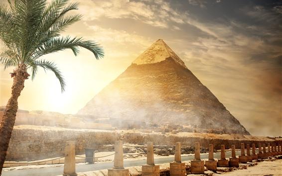 Hintergrundbilder Ägypten, Pyramide, Zaun, Bäume