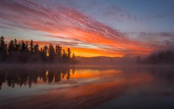 Fond d'écran Lac, arbres, brouillard, coucher de soleil, brumeux