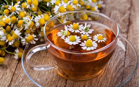Hintergrundbilder Eine Tasse Blumentee, Gänseblümchen