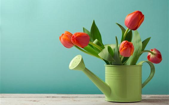 Обои Красные тюльпаны, чайник, зеленый