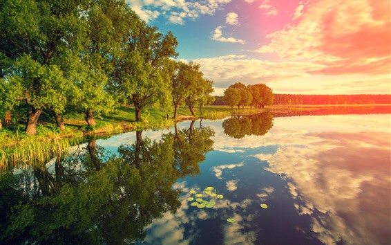 Wallpaper River, trees, water reflection, clouds, sunshine, nature landscape