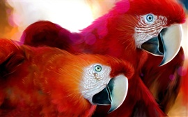 A pair of red parrot