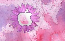 Apple розовые цветы