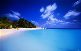 Preview wallpaper Neotropical summer beach