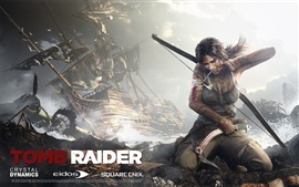Preview wallpaper Tomb Raider 9 HD