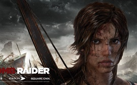 Preview wallpaper Tomb Raider 9