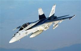 미리보기 배경 화면 FA - 18 호넷 VFA - 41 전투기