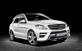 Preview wallpaper Mercedes-Benz M-Class
