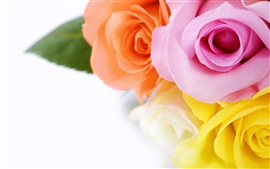 Preview wallpaper Rose bouquet