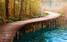 Preview wallpaper Wood bridge