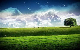 Meteor across the sky, green grass