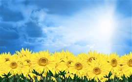 Preview wallpaper Golden sunflower under blue sky