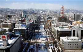 Preview wallpaper Japanese city after snow