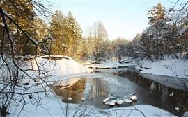 Aperçu fond d'écran Nature arbres de la neige en hiver