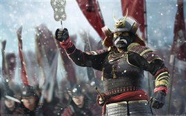 Preview wallpaper Shogun 2: Total War