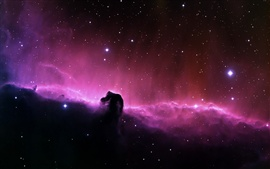 Beautiful purple nebula in space Wallpapers Pictures Photos Images
