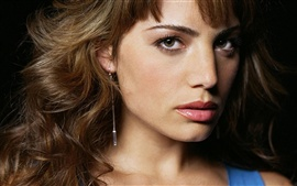 Preview wallpaper Erica Durance 01